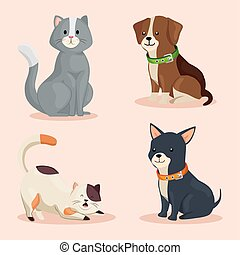 group of cute dogs with cats