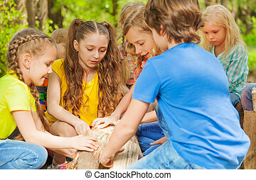 Group of cute kids playing with logs in the forest