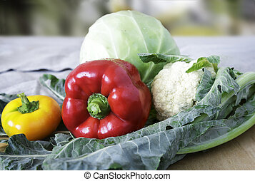 Group of different vegetables on the table.
