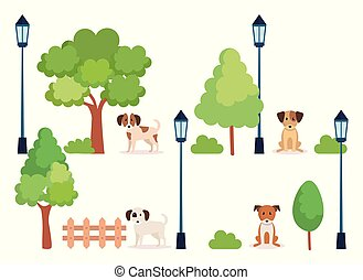 group of dogs in park