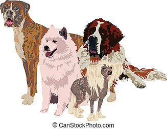 group of dogs of different breeds