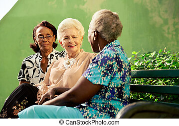 Group of elderly black and caucasian women talking in park -...