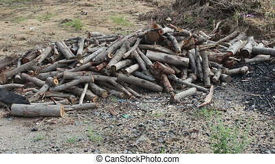 group of firewood