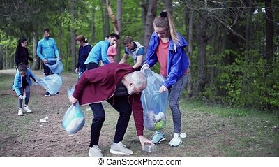 A group of fit young people picking up litter in nature, a plogging concept. Slow motion.