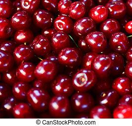Group of fresh cherries background