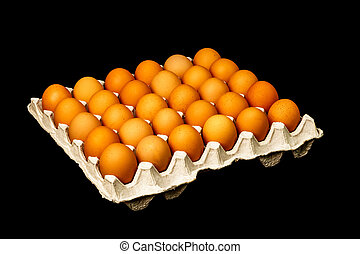 Group of fresh eggs in paper tray isolated on black background