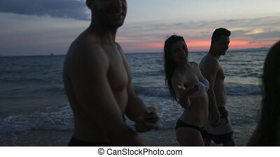 Group Of Friends Talking On Beach At Sunset POV, Young...