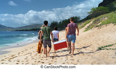 Group of friends walking on beach 4k