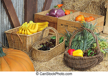 Group of Fruit in the basket