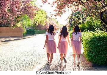 Group of girlfriends walking city street in springtime while sakura tree is blooming