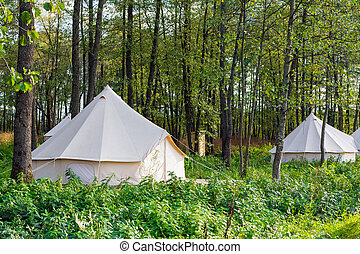 Group of glamping bell tents at forest