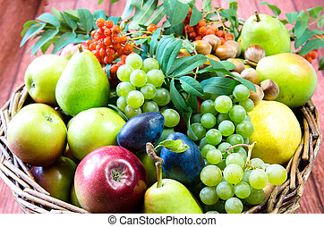 group of healthy autumnal colorful fruits