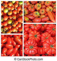 group of  images with assorted  tomatoes on italian market as ba