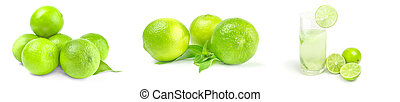 Group of limes isolated on a white background with clipping path