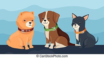 group of little dogs animals