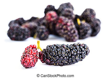 Group of mulberries isolated on a white background.