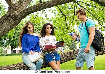 Group of multi ethnic students in a city park