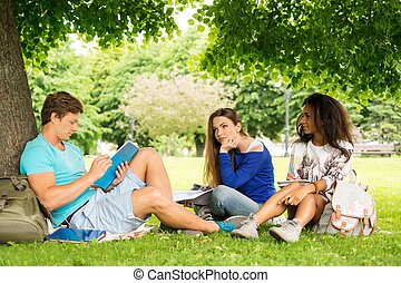 Group of multi ethnic students preparing for final exams in a city park