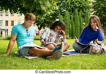 Group of multi ethnic students preparing for final exams in...