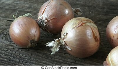 Group of onions on wooden background. Fungus on Onions....