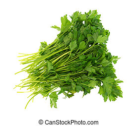 Group of parsley on a white background