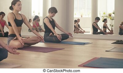 Group of people doing yoga asanas in studio - A group of...