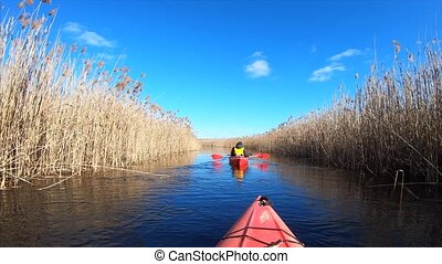 Group of people in kayaks among reeds on the autumn river. -...