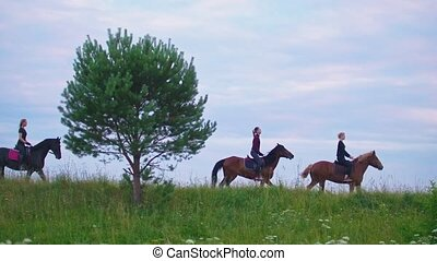Group of people on horses galloping on the field