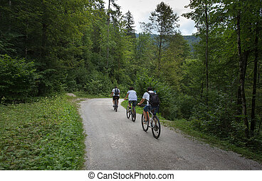 Group of people riding bikes in forest