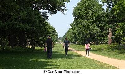 Group of people walking in the park