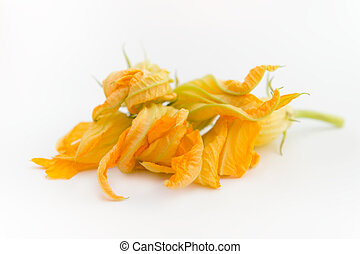 Group of pumpkin flowers