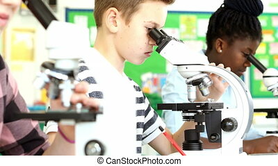 Group Of Pupils Using Microscopes In Science Class - Line of...