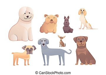 Group of purebred dogs. Illustration for dog training courses, breed club landing page and corporate site design