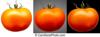 Group of red tomatoes isolated on different