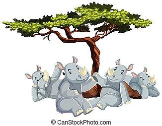 Group of rhino under the tree
