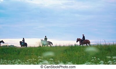 Group of riders on horseback rides forward the field at...