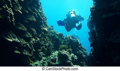 Group of scuba divers ascending on water surface in Egypt....