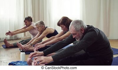 Group of senior people doing exercise in community center...