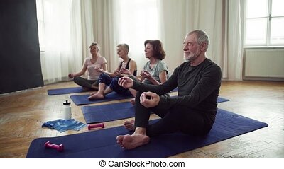 Group of senior people doing yoga exercise in community...