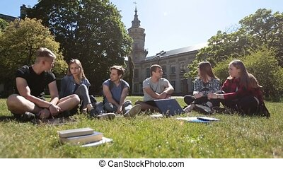 Group of students chatting on campus lawn