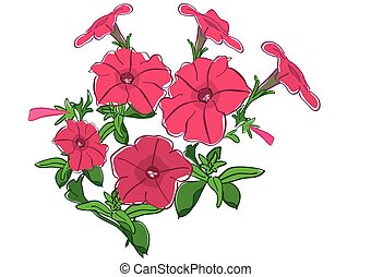 group of summer flowers - red petunia - vector