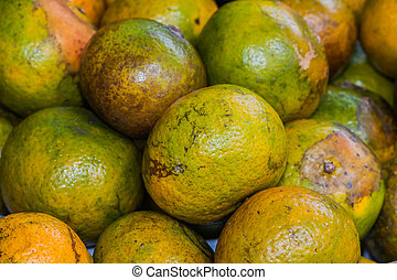 Group of tangerine oranges