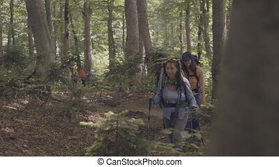 Group of tourist people walking on forest path while summer...