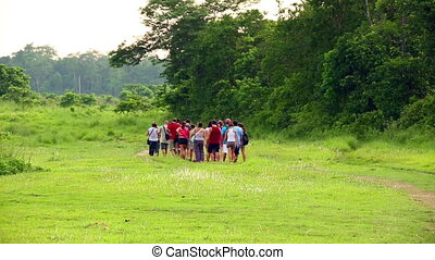 Group of tourist walking along lush meadow