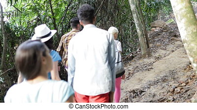 Group Of Tourists Trekking In Forest Back Rear View, People On Hike Together Trail, Young Travelers Team