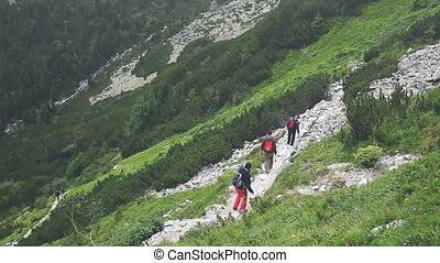 Group of tourists trekking in High Tatra mountains