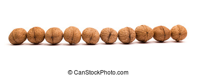 Group of walnuts on white background standing in a line.