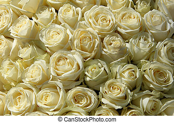 Group of white roses in floral wedding decorations
