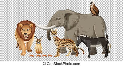 Group of wild african animal on transparent background