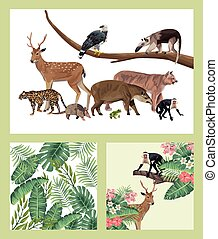 group of wild and exotic animals
